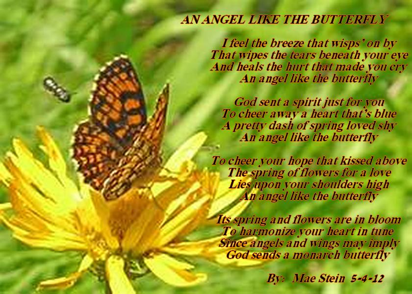 Spiritual Butterfly Poems And Quotes Quotesgram