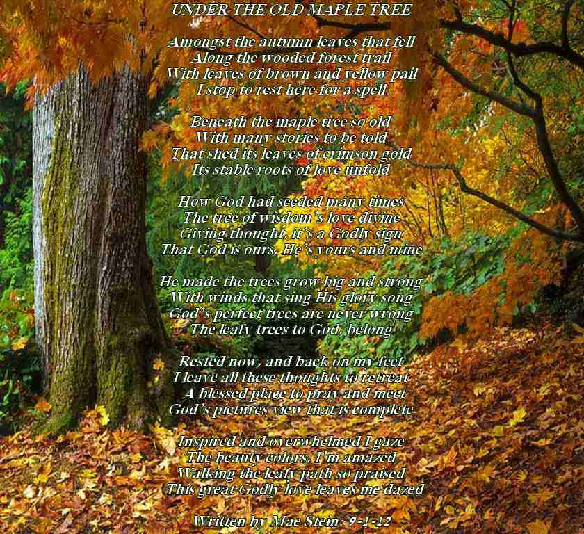 UNDER THE OLD MAPLE TREE - Nature Poems