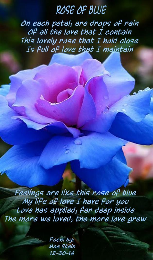 Rose Of Blue All Types Of Poetry