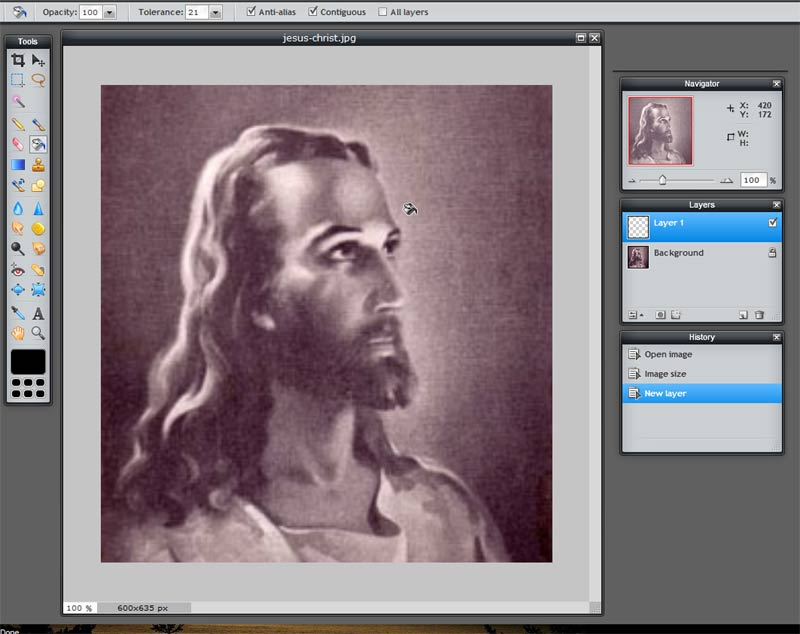 how to change opacity in pixlr
