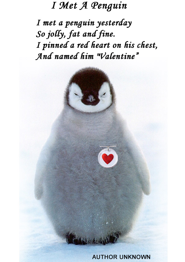 Penguin Love Quotes Poems Images Enchanting Penguin Love Quotes